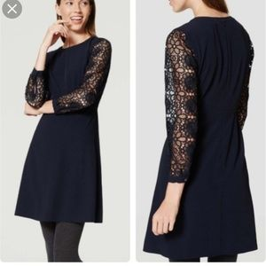 NWT Ann Taylor navy lace sleeve dress